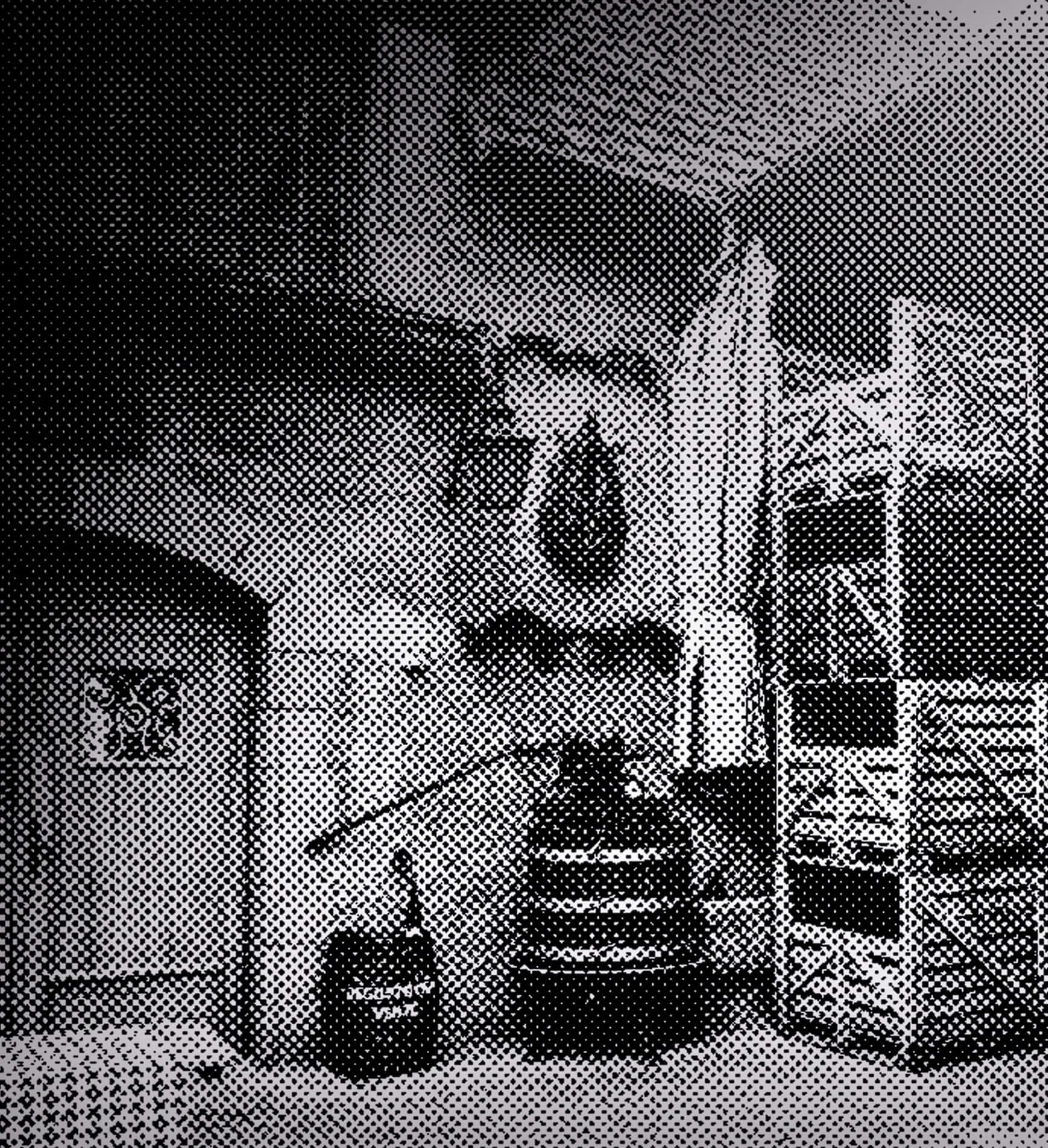 Kijafa zdjęcie z winnicy